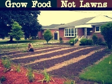 Foodlawn